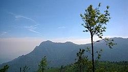 250px-Nilgiri_hills_wide_view